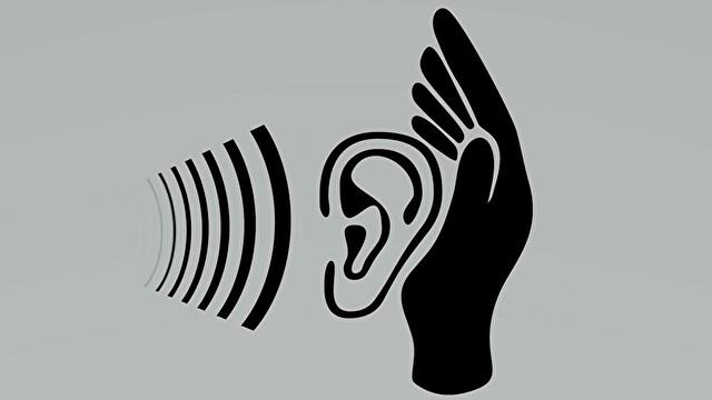 ウッドベース / コントラバスの音程をよくするには、耳を鍛えることが大切