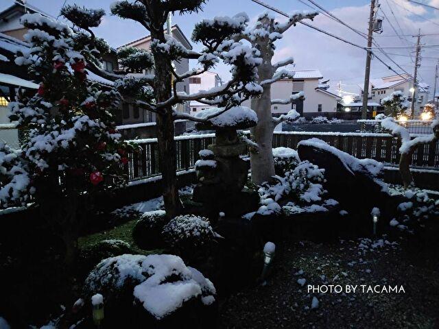 「隠れる雪」