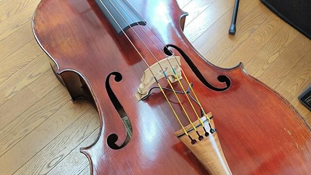 有名ジャズベーシストが愛用している弦まとめ【ウッドベース弦】