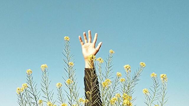 エレキベースコントラバスで、左手の指を広げる練習【ストレッチ】