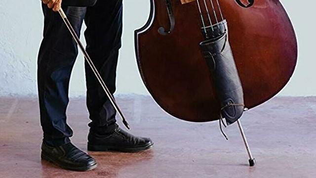 コントラバス/ウッドベースの、楽器の高さの決め方